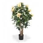 Hibiscus Deluxe zalm 100cm