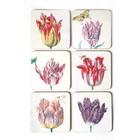 Onderzetters - Tulpen illustraties van Marrel