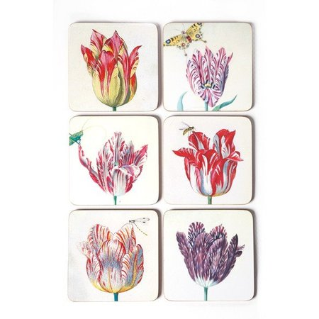 Coasters - Tulips illustrations by Marrel
