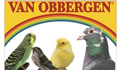 VAN OBBERGEN