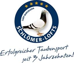 Schloemer-lofts