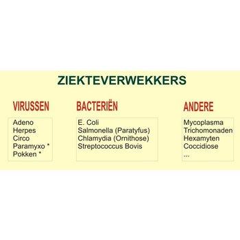 Ziekte symptomen