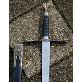 Karel de 5de zwaard