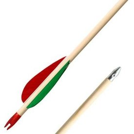 "26"" arrow (66 cm)"