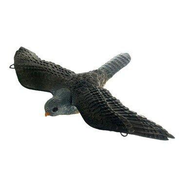 FB 3D vliegende havik