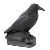 FB 3D cuervo sentado