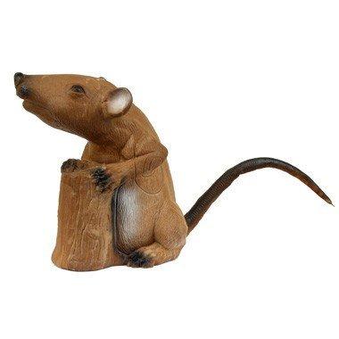 Le rat musqué debout 3D