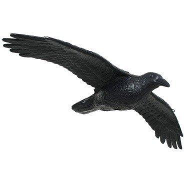 FB 3D flying raven