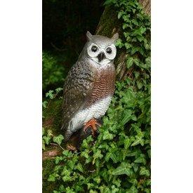FB 3D brown owl