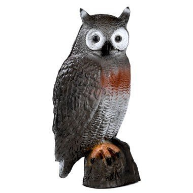 FB 3D brown owl