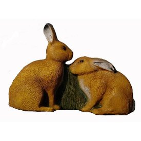 IBB semi-3D 2 European hare