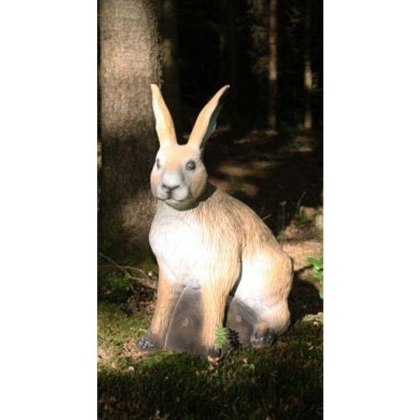 FB 3D sitting European hare