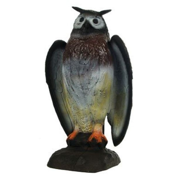 FB 3D sitting eagle owl