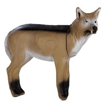 FB 3D coyote en pie