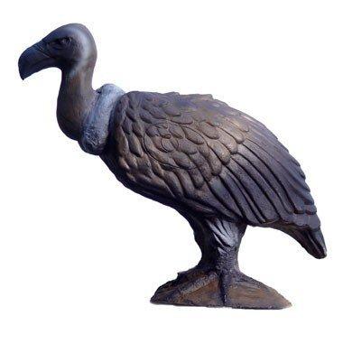 Avvoltoio 3D