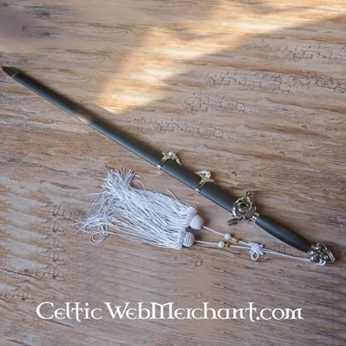 Blanc Tai Chi épée