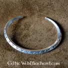 Vichingo soldi braccialetto (SOG)