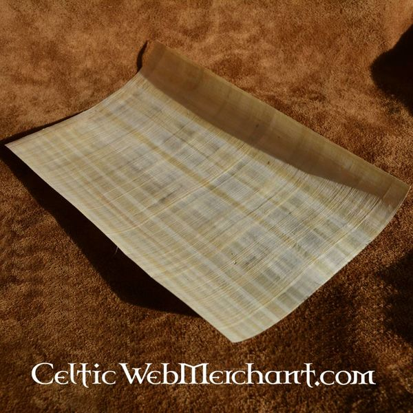 Foglio di papiro 62x42 cm