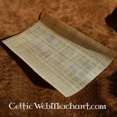 Hoja de papiro 20 x 30 cm