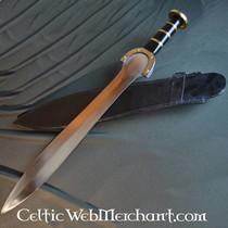 Celtic Hallstatt sword