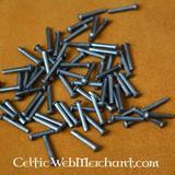 100 in acciaio rivetti 12 mm