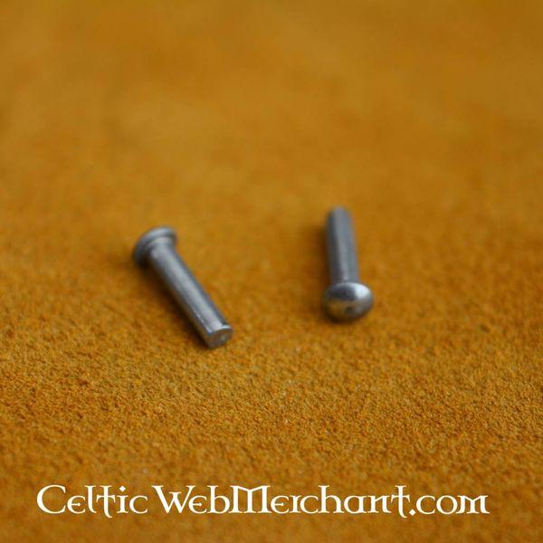 100 acier rivets 10 mm