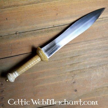 Dague de gladiateur, Pompeii