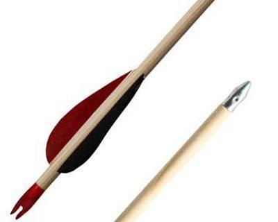 Moderne og traditionelle bueskydningspile