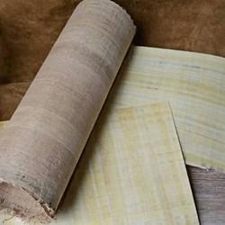 Papyrus & parchment