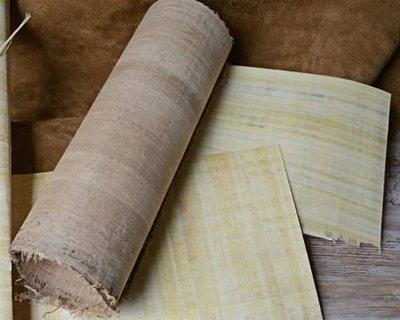Papyrus et parchemin