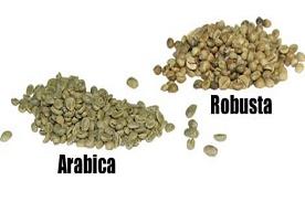 Arabica en Robusta bonen
