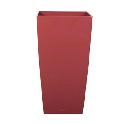 Lechuza Cubico Scarlet red