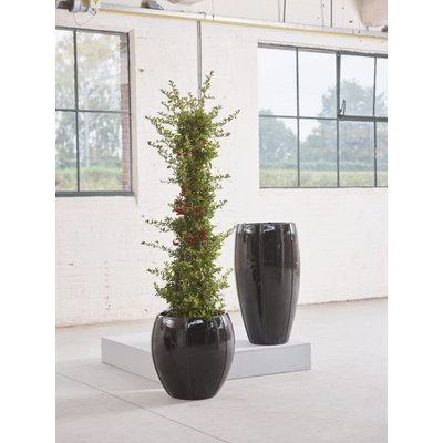 Plantenbak Moda Couple 43 zwart glans