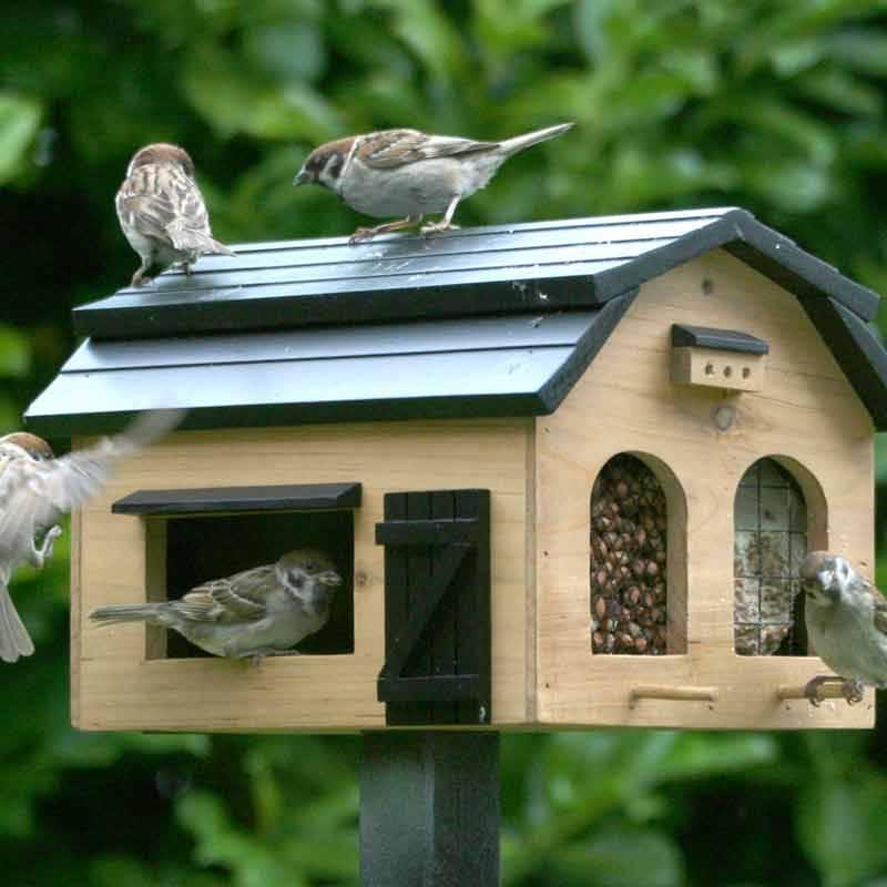 Vogelvoederhuisjes en vogelvoedersystemen voor gezellig vogel verkeer