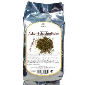 Acker-Schachtelhalm