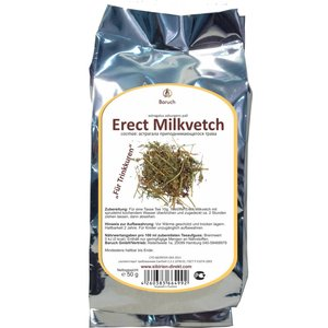 Erect Milkvetch