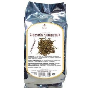Clematis hexapetala