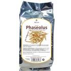 Phaseolus