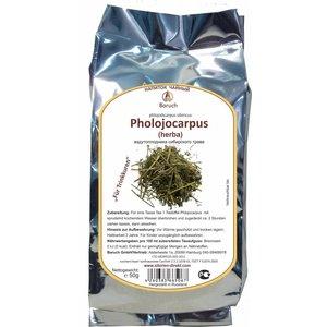 Phlojodicarpus