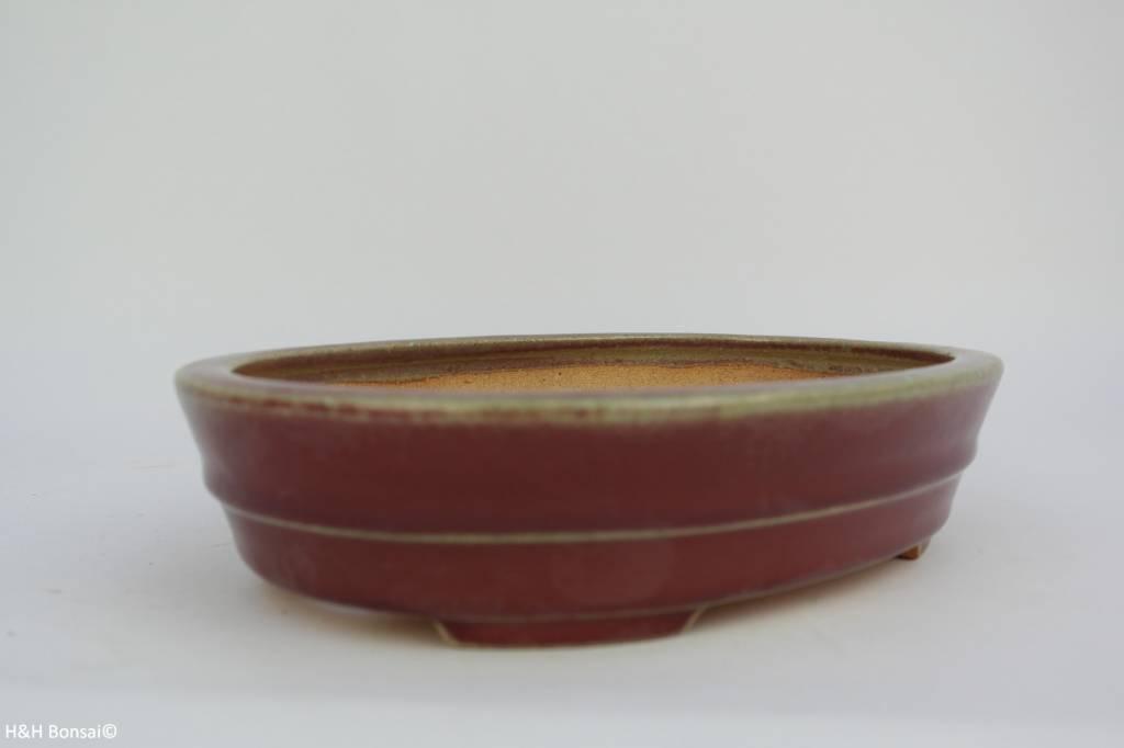 Tokoname, Pot à bonsaï, no. T0160034