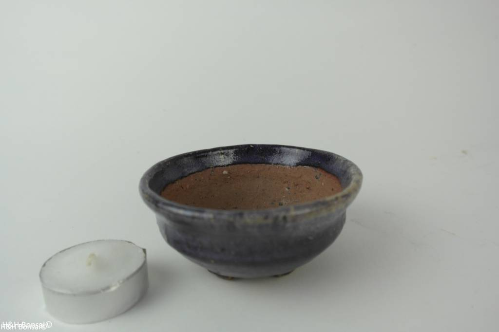 Tokoname, Pot à bonsaï, no. T0160201