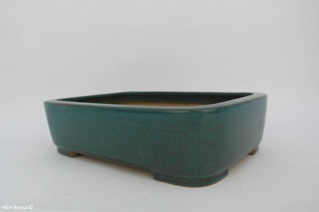 Tokoname, Bonsai Pot, no. T0160027