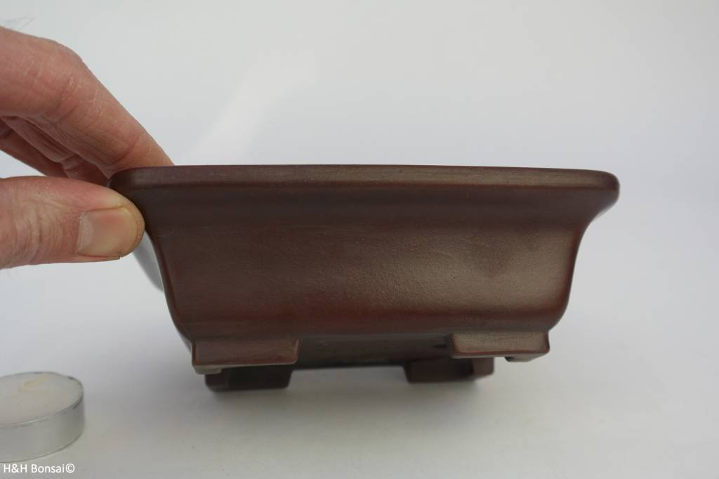 Tokoname, Bonsai Pot, no. T0160107