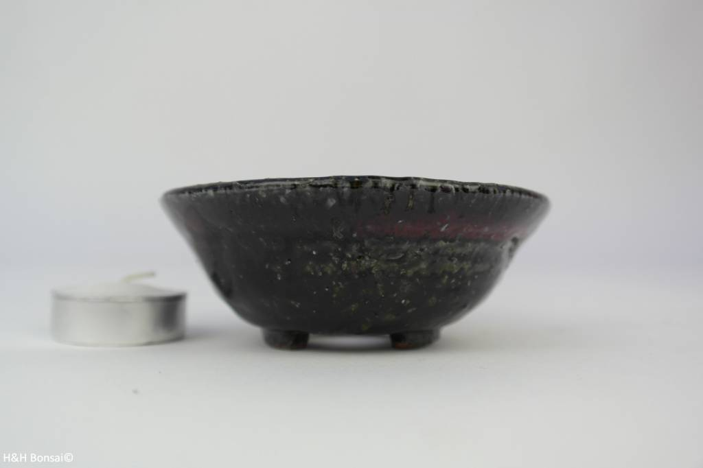 Tokoname, Bonsai Pot, no. T0160113