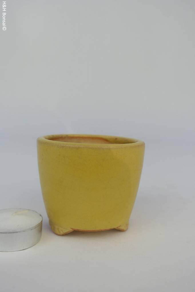 Tokoname, Bonsai Pot, no. T0160118