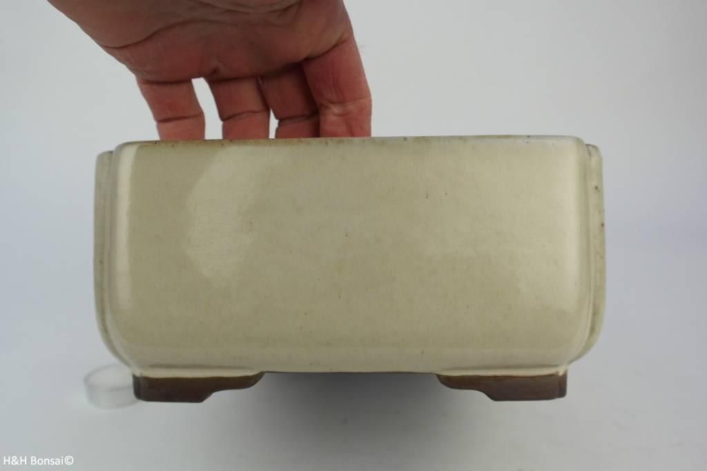 Tokoname, Bonsai Pot, no. T0160137