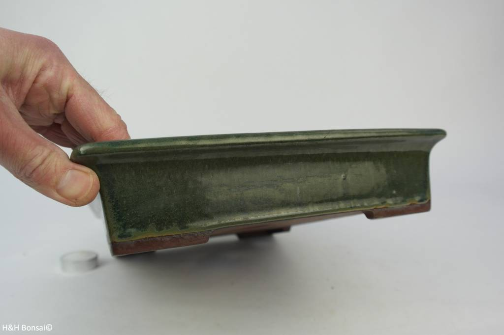 Tokoname, Bonsai Pot, no. T0160141