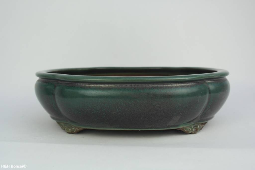 Tokoname, Bonsai Pot, no. T0160043