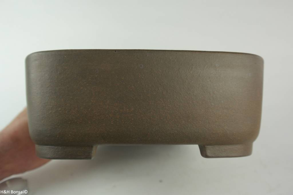 Tokoname, Bonsai Pot, no. T0160236
