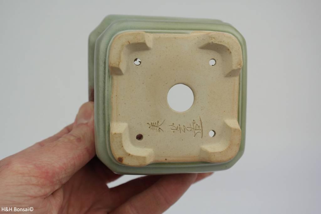 Tokoname, Bonsai Pot, no. T0160017